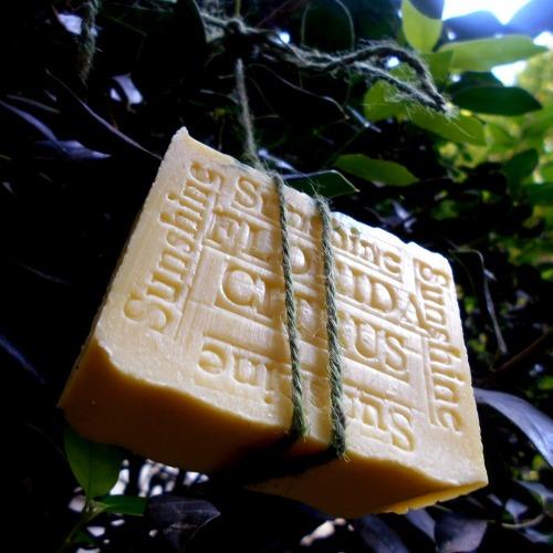 AA2_citrus_bar_soap