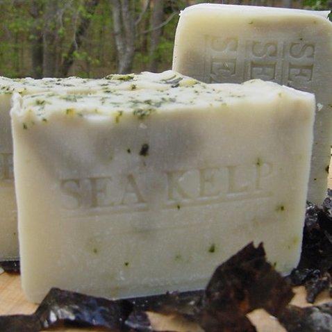 Handmade Soap Sea Kelp Varech 7 oz. with Organic Artisan Cocoa Butter Excellent Facial Soap Bar (Unscented Soap) Handmade !