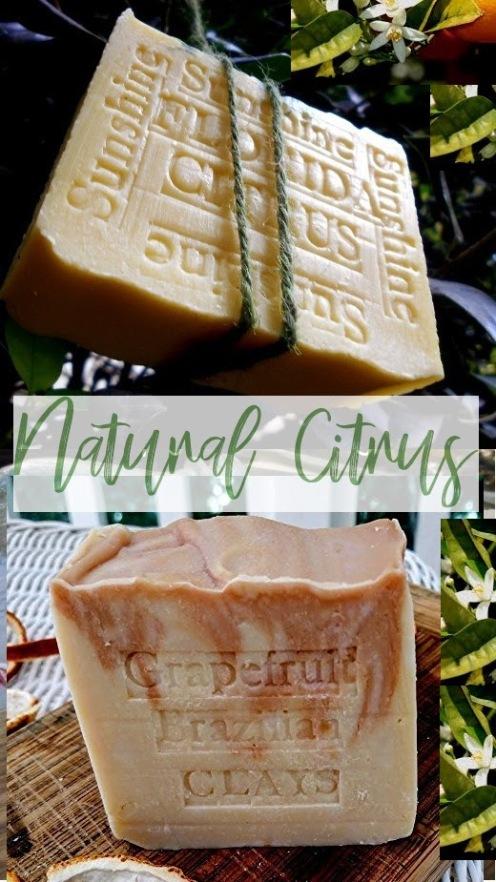 Spring Natural Florida Citrus Artisan handmade Soap
