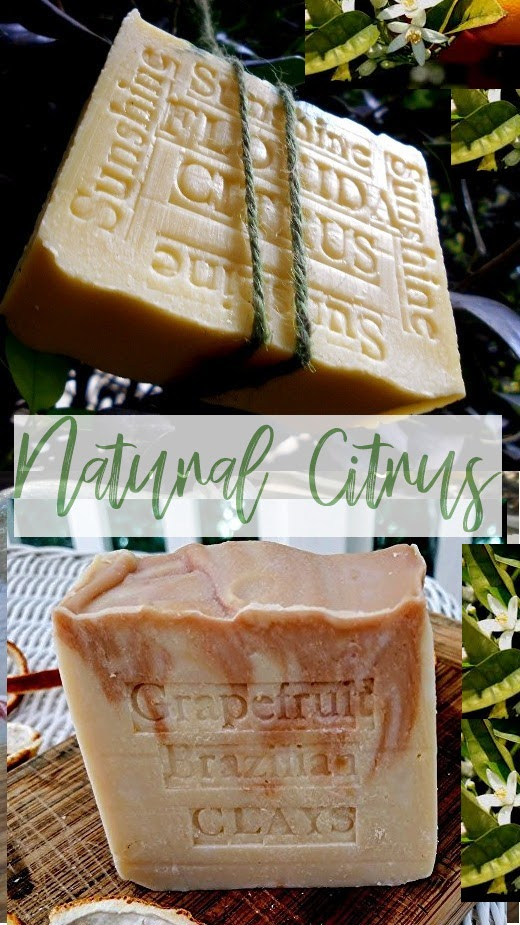 Spring Natural Florida Citrus Artisan handmade Soap