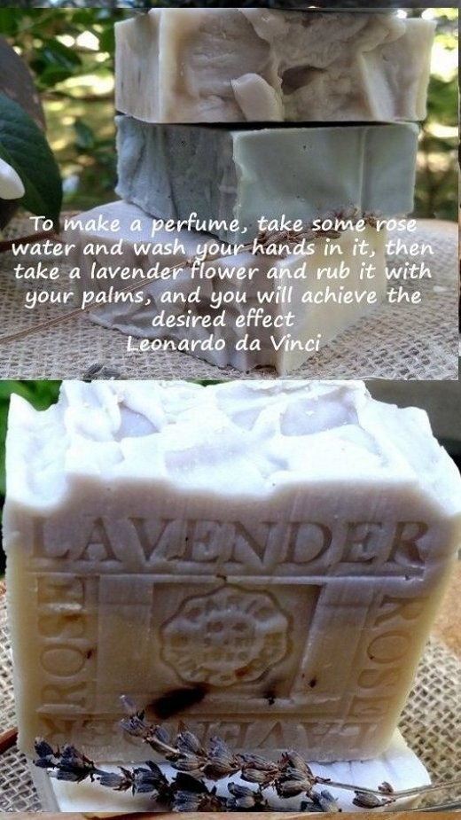 Lavender Plants and Herbs - Come From Our Therapy Garden